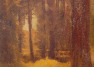 Sous-bois, 1911